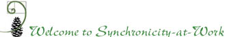 Welcome to Synchronicity-at-Work